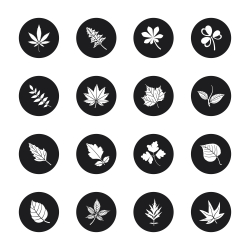 Leafs Shape Icons - Black Circle Series