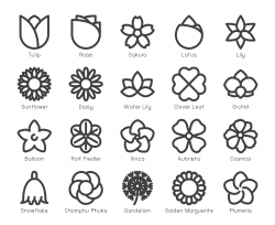 Flower - Bold Line Icons